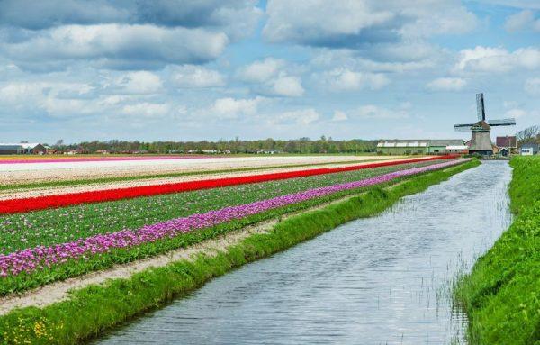 טיול בהולנד