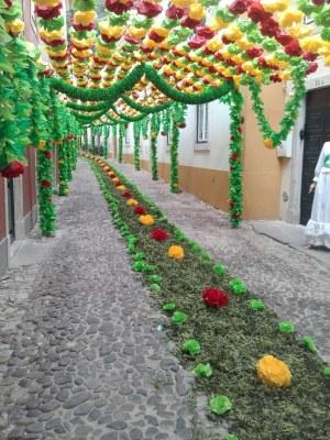 טיול מאורגן לפורטוגל עם מאיר סגל