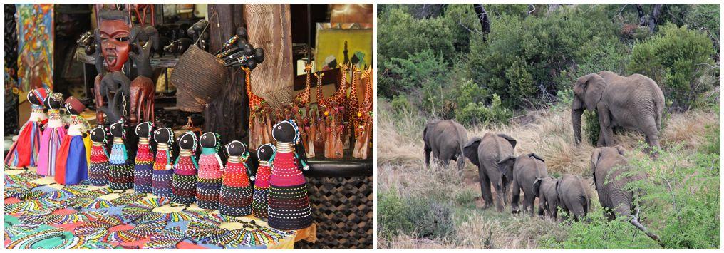 טיולים לדרום אפריקה