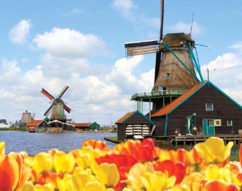 המלצה לטיול משפחות בהולנד, בלגיה וצרפת